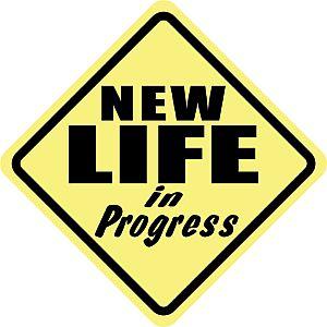new_life_in_progress